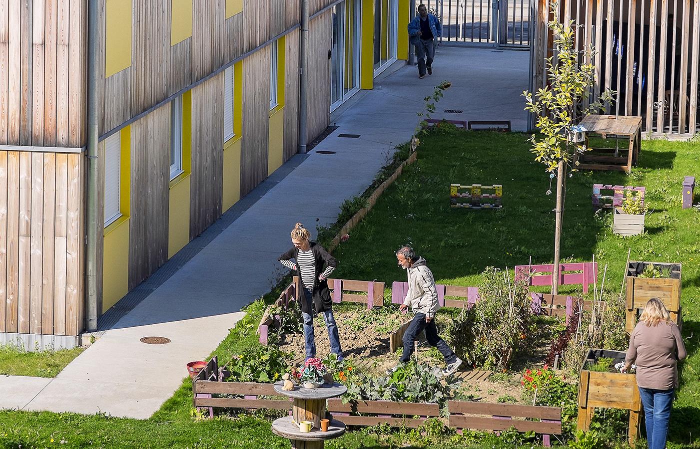 Photo d'un jardin collectif dans une résidence sociale